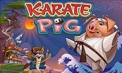 Karate Pig - Δωρεάν Φρουτάκια Καζίνο